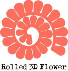 Flower_3D_ex(pp_w234_h242)