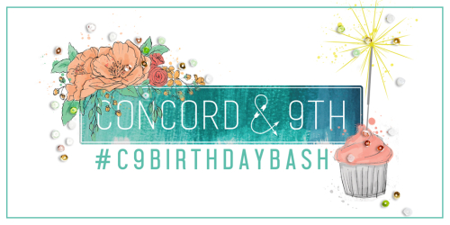 C9 Birthday Bash RECTANGLE