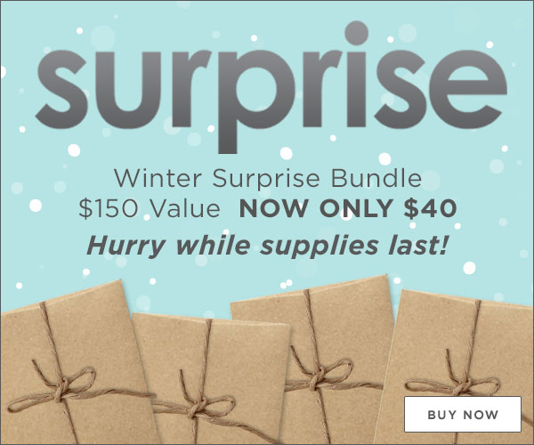 Winter-Surprise-Bundle-600x500-Email-Header