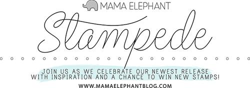 STAMPEDE BANNER 2015-FINAL-700